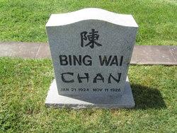 Bing Wai Chan