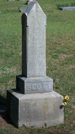 Pleasant Winfield Scott
