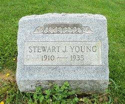 Stewart J Young