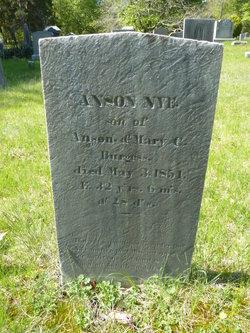 Anson Nye Burgess