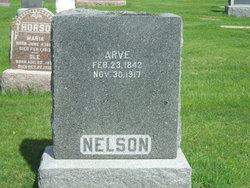 Arve Nelson