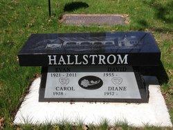 Evan Harold Hallstrom