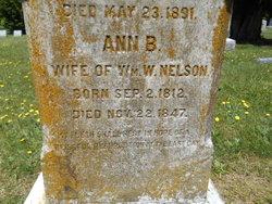 Ann B. Nelson