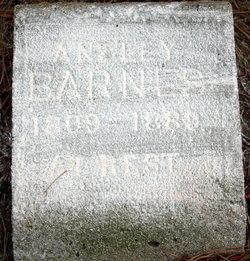 Anzley Barnes