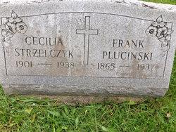 Cecilia F <i>Plucinski</i> Strzelczyk