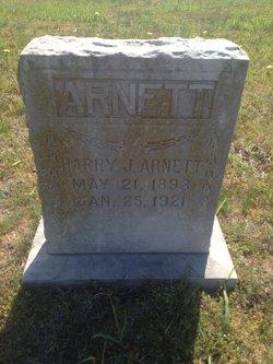 Harry J Arnett