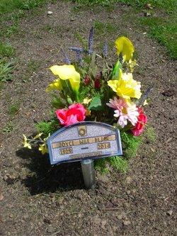 Joyce Mae <i>Sholes</i> Blain