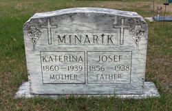 Joseph Josef Minarik