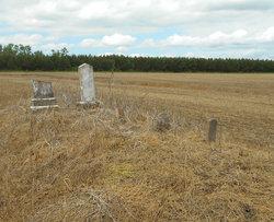 Brinson Family Cemetery