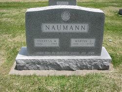 Rev Martin Justus Naumann