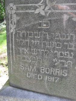 Sam Borris