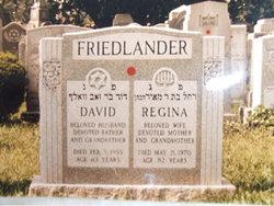 David Friedlander