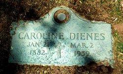 Caroline Dienes