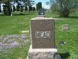 John Cephas Mead