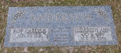 Elizabeth Ann Libba <i>Walters</i> Anderson