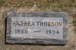 Andrea Thorson