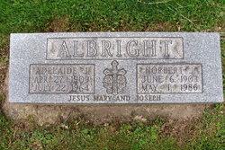 Norbert J Albright