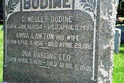 Anne <i>Lawton</i> Bodine