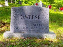 Jacob Andrew Deweese