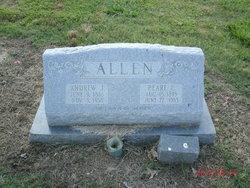 Andrew J Allen