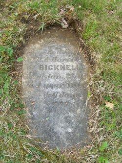 Henry W. Bicknell