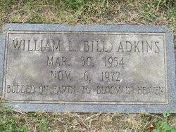 William Lewis Bill Adkins