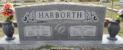 David Hugo Harborth