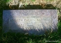 Andrew Calvin Baldwin