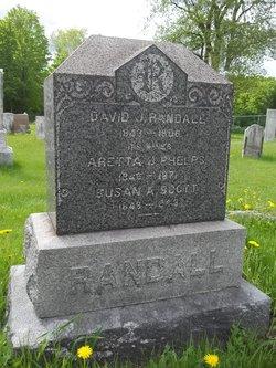 David J S Randall