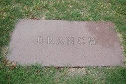 Infant Son Branch