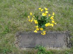 Alice Angeline <i>Rose</i> Anderson