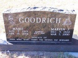 Marvin J. Goodrich