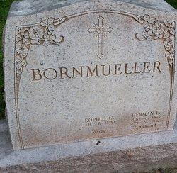 Herman E Bornmueller