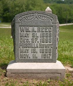 William Allen Reed