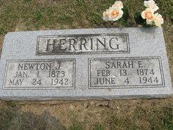 Sarah Elizabeth <i>Graves</i> Herring
