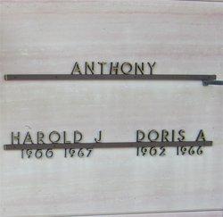 Harold J. Anthony