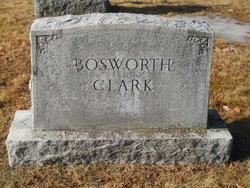 Albert Eugene Bosworth