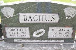Dorothy Elizabeth <i>Siebke</i> Bachus