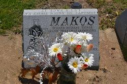Michal T. Makos
