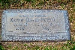 Keith David Pettit