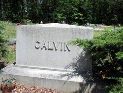 Vincent L Calvin