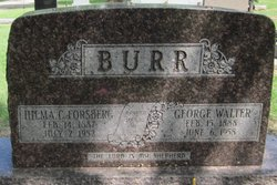 George Walter Burr