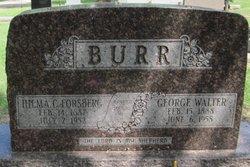 Hilma Carolina <i>Forsberg</i> Burr