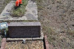 Elizabeth Jo Ann Taylor