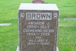 Andrew J Brown