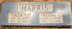 Callie L Harris