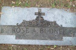 Rose Anna <i>Hager</i> Budnek