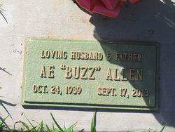 A. E. Buzz Allen