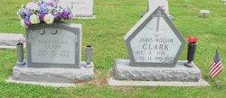 Mary Susan <i>Hope</i> Clark