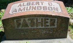 Albert C Amundson